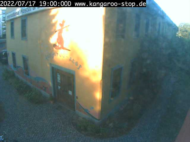 Webcam Hostel kangaroo-stop Dresden